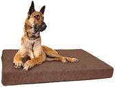 Hunde-matratzen die besten