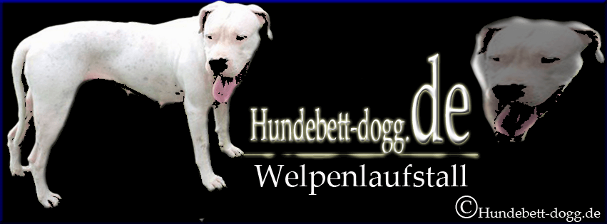 welpenlaufstall für hunde