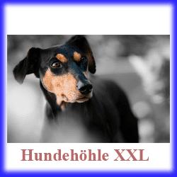 hundehöhle xxl