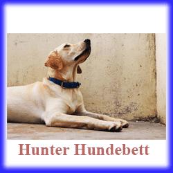 hunter hundebett