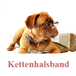 Kettenhalsband für hunde