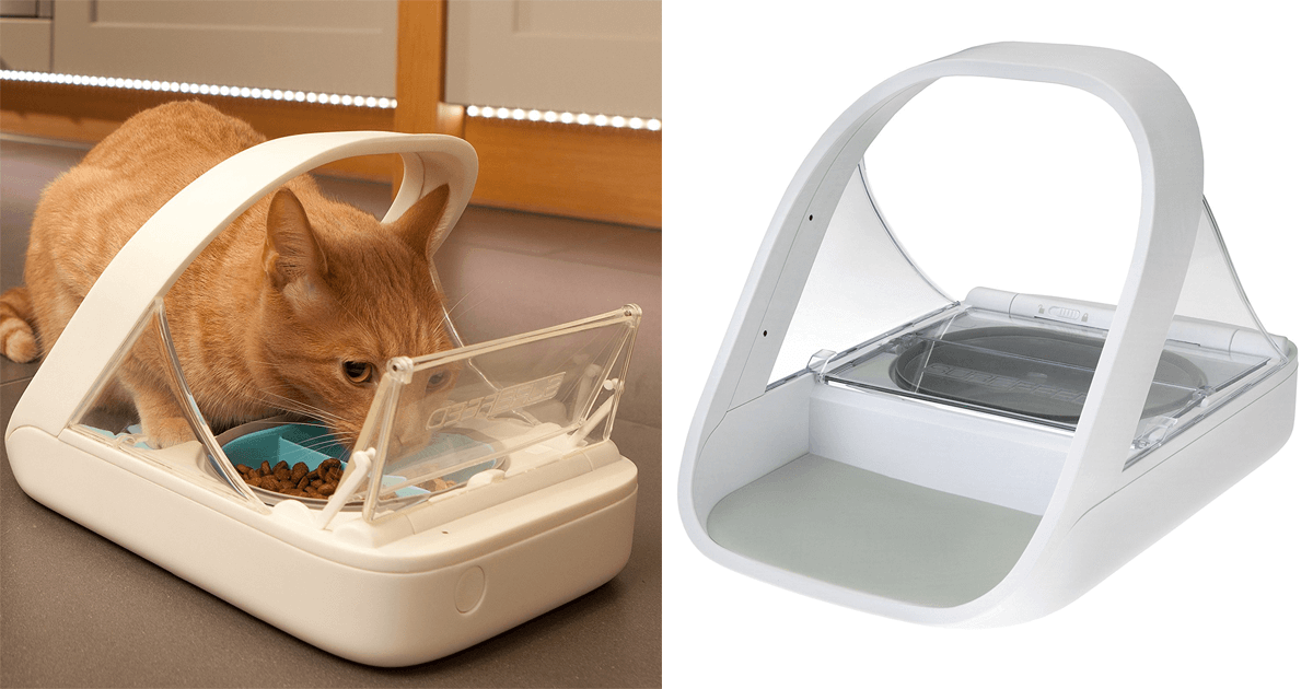 ii i futterautomat mit chip f r hunde katzen der beste f r. Black Bedroom Furniture Sets. Home Design Ideas